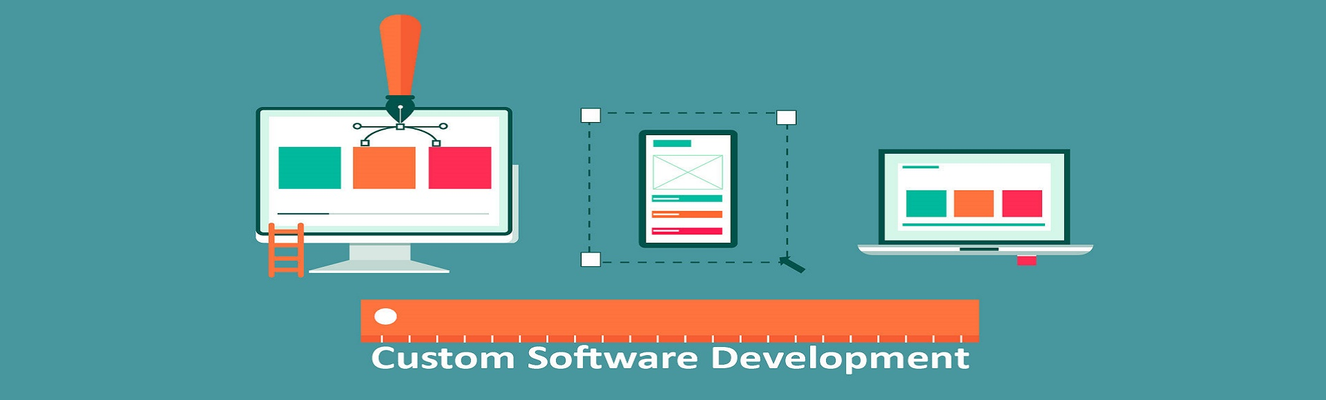custom software development in india, bareilly